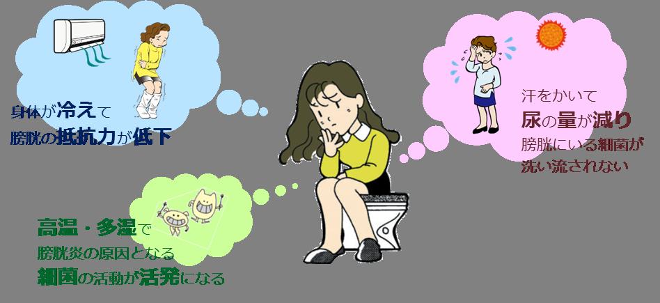 膀胱 炎 の 原因 女